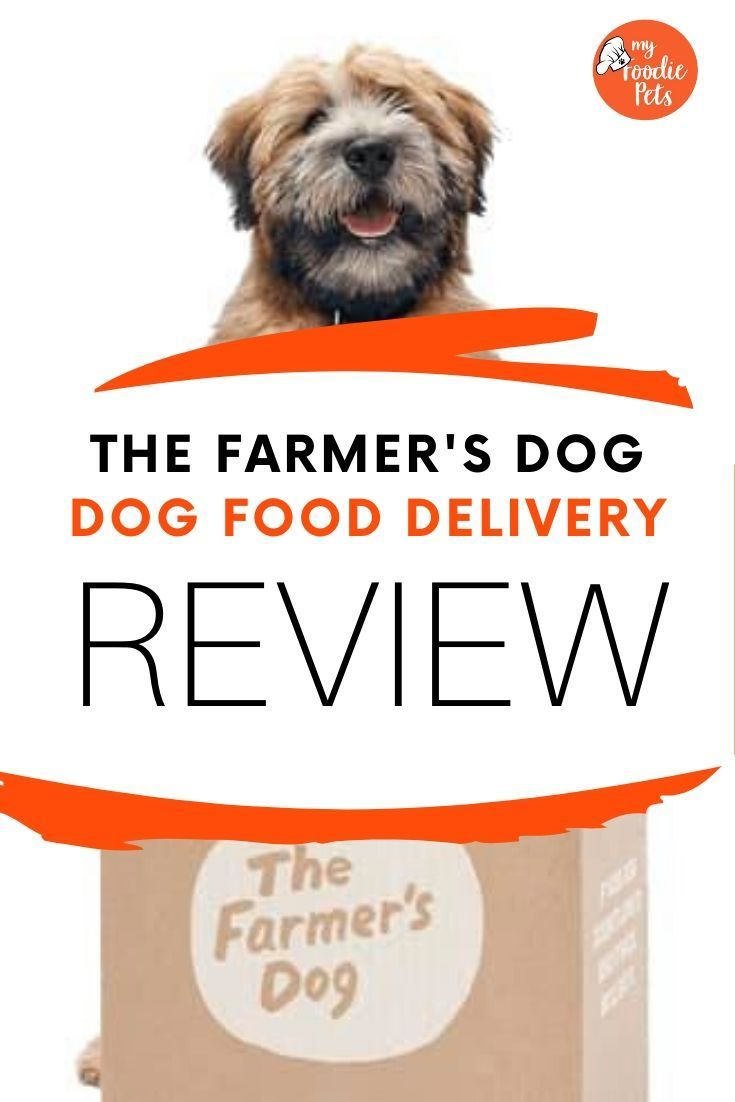 The Farmer S Dog Review Pros And Cons In 2020 Dog Food Delivery
