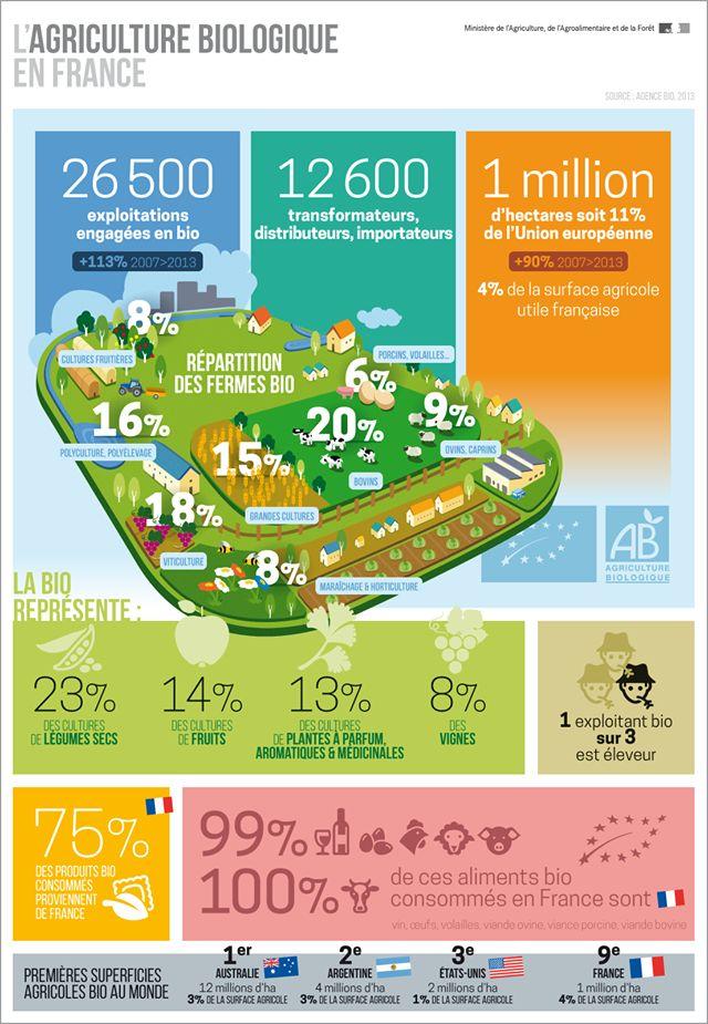L'agriculture biologique en France  #agriculturebiologique #AB #infographie #infography #agriculture
