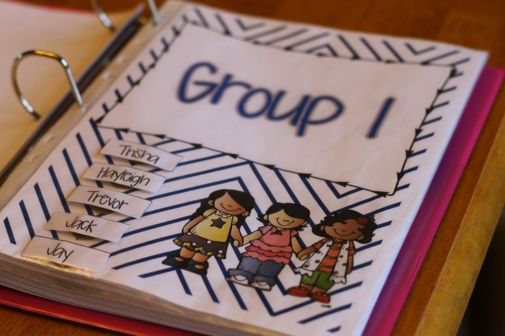 Guided Reading Binder Freebie.  Use velcro to change out the student names.