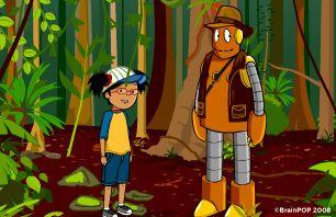 Rainforest habitats Information & Activities