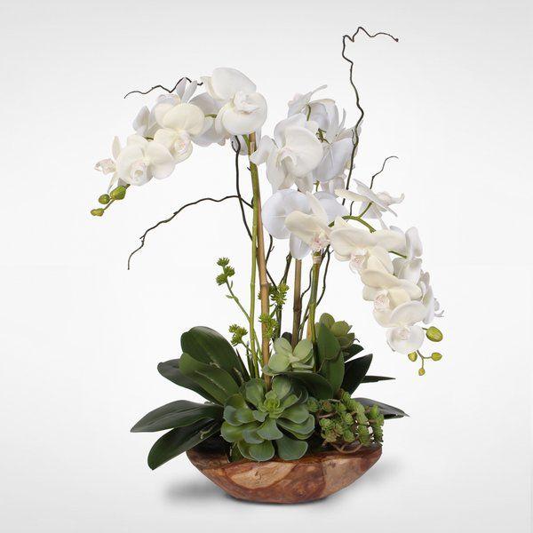 Orchid Flower Arrangement Ideas Orchid Flower Arrangements Flower Arrangements Simple Orchid Arrangements