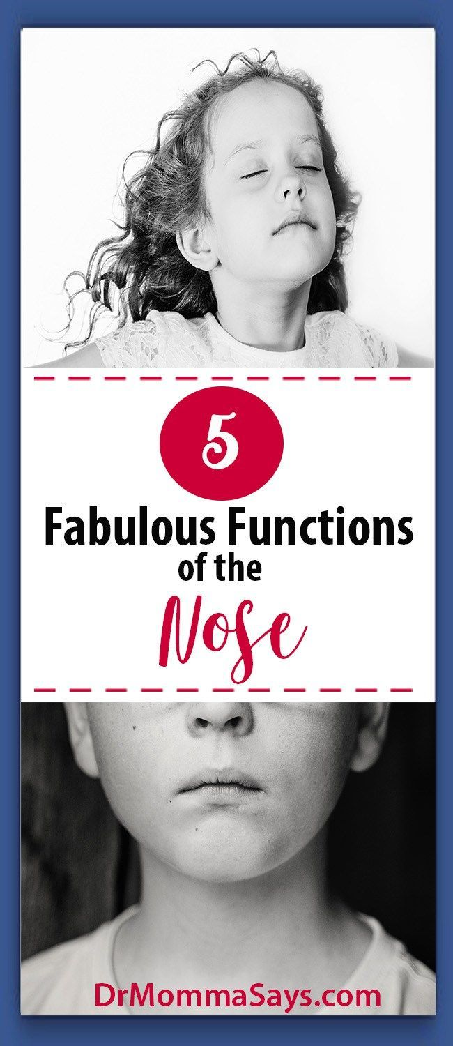 Dr. Momma discusses the importance of the outer and inner part of the nose and nasal cavity while highlighting 5 fabulous functions of the nose. Breathing l Smell l Hearing l Nasal Mucus l Nosebleed l Sinus infection l Nasal Voice l Septum l Turbinate l Hearing l Taste l Cilia l Antibodies