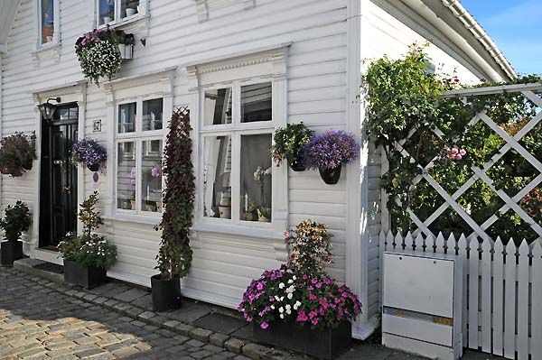 garden in gamle neighborhood, stavanger, norway