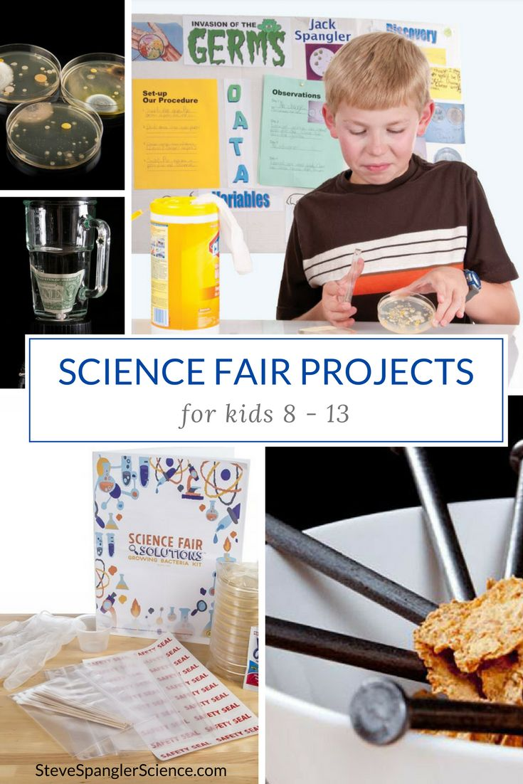 help with science fair project Science fair central is the destination for all your science, technology, engineering, art, and mathematics (steam) fairs and events and be sure to stay tuned—more content is coming in august.
