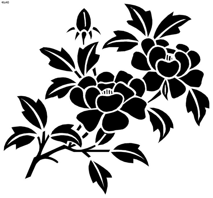 Flower Colouring Stencils Flora Coloring Pages Wild Flowers Page