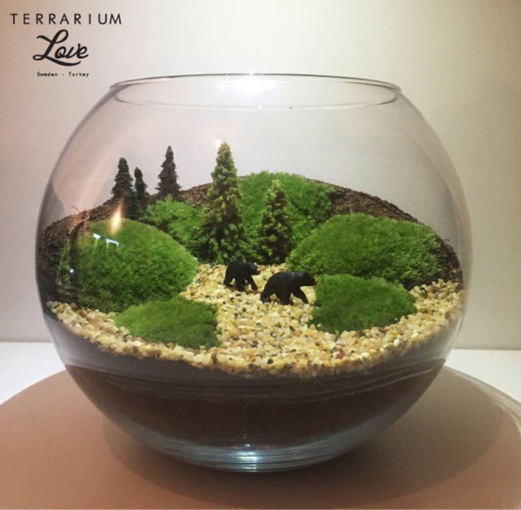 Terrarium love の Bear Terrarium #インテリア #可愛いインテリア #デザイン #テラリウム #ガーデニング