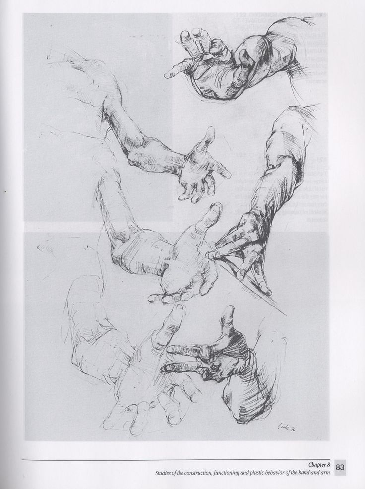 22 best george bridgman images on pinterest george bridgman behavior of the hand and arm gottfried bammes the artists guide to human anatomy fandeluxe Gallery
