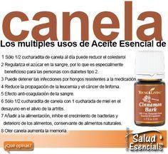 Los multiples usos de Aceite Esencial de canela http://www.saludesencial.org/blog/los-multiples-usos-de-aceite-esencial-de-canela/