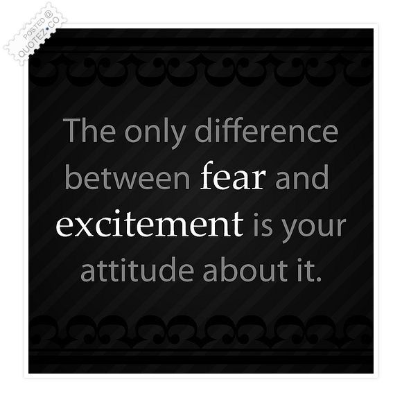 Difference Between Fear And Excitement Quote