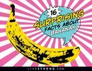 What Are the Benefits of Eating Banana Peels? | LIVESTRONG.COM