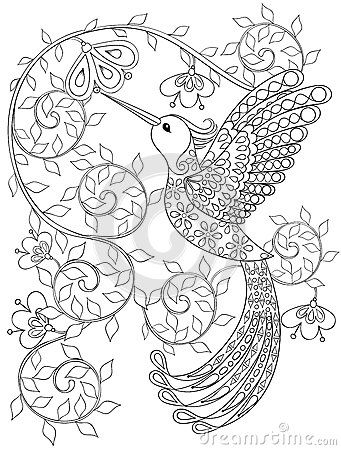 Coloring page with Hummingbird, zentangle flying bird for