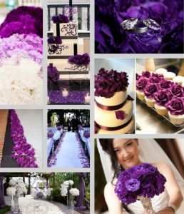 The colors for my wedding will be dark/royal purple, black and white