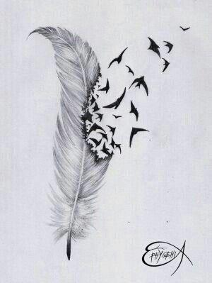 Imagen de bird, feather, and drawing