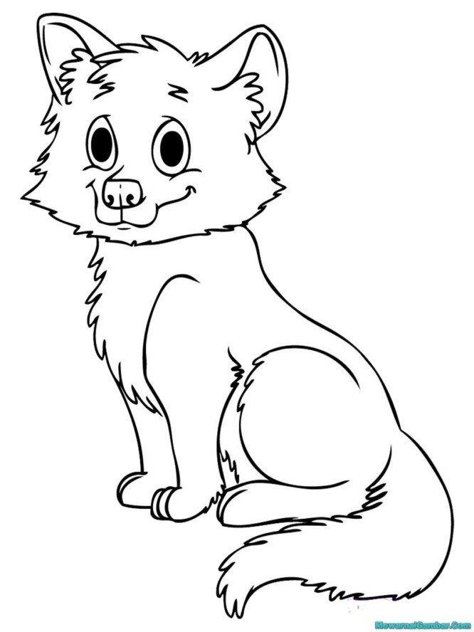 Gambar Belajar Mewarnai Untuk Anak Anak Gambar Serigala Eva Fox