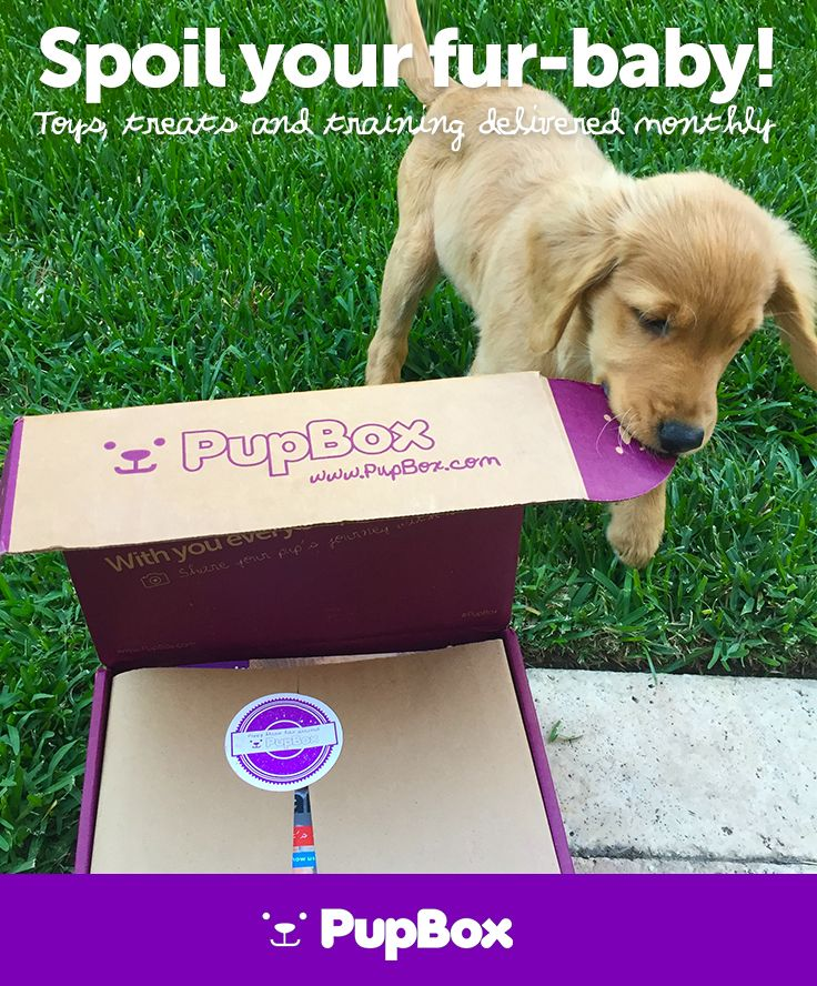 New Puppy? Give the gift of PupBox - The worlds best toys, treats, and training info delivered monthly.