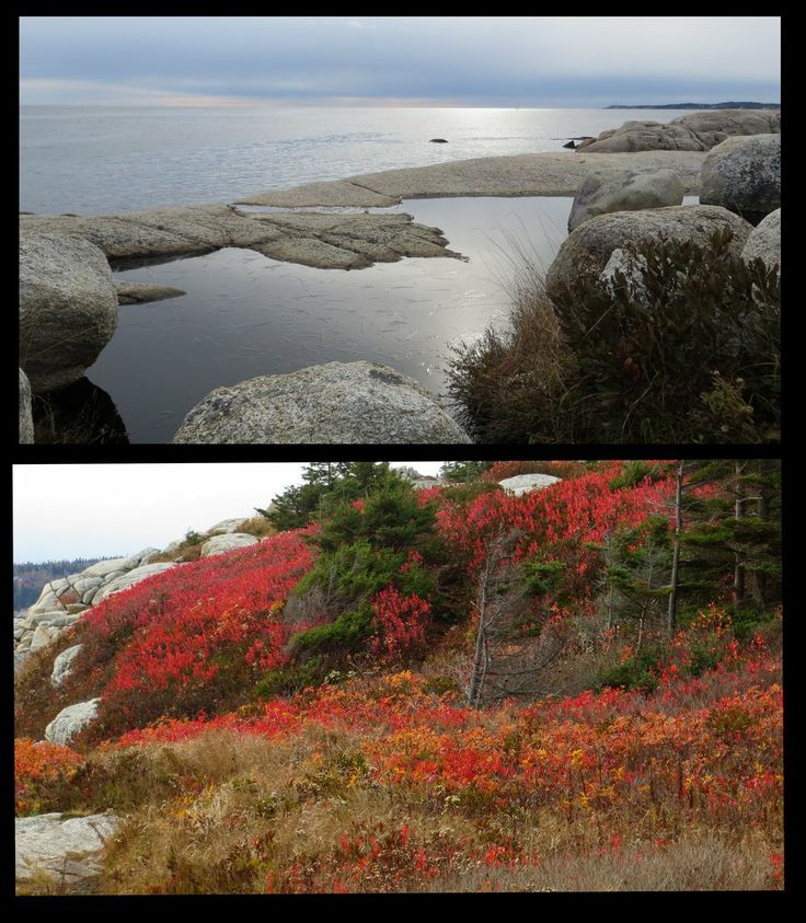 1000  images about nova scotia style on pinterest