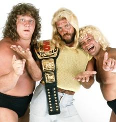 Fabulous Freebirds  From: Badstreet, U.S.A.  Career Highlights: WCCW Six-Man Tag Team Champions; WCW Six-Man Tag Team Champions; WCW Tag Team Champions; WCW United States Tag Team Champions; United States Champion