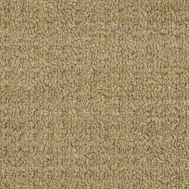 Sisal Rug Got Wet: Carpet That Looks Like Sisal
