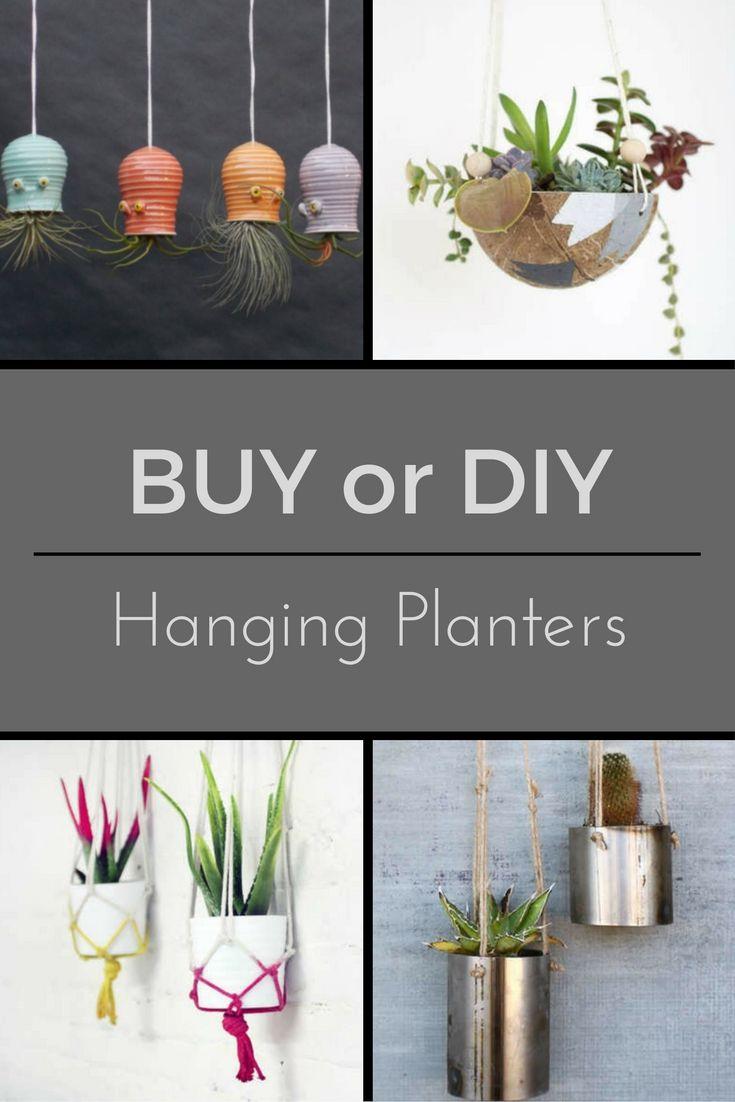 253 best Indoor Gardening: Bob Vila's Picks images on Pinterest ...