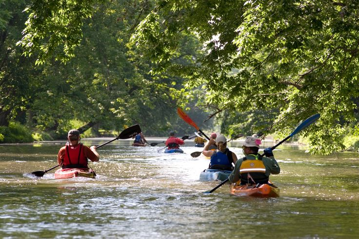 Kayakers paddle along the Schuylkill River in Montgomery