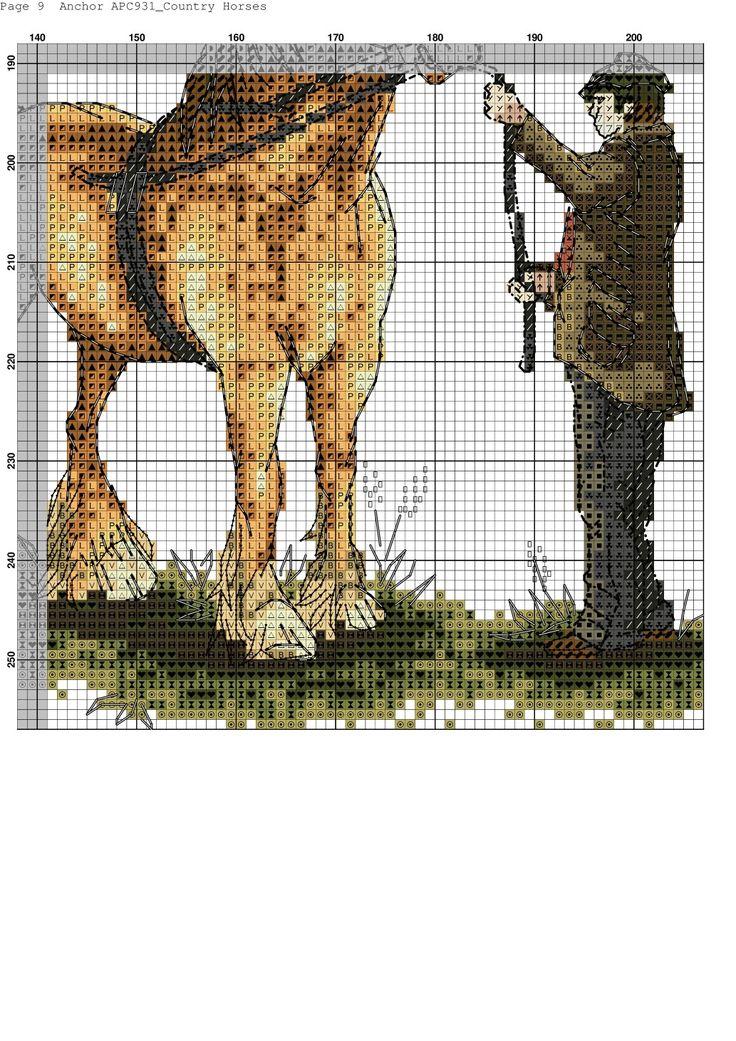 Contry Horses 9