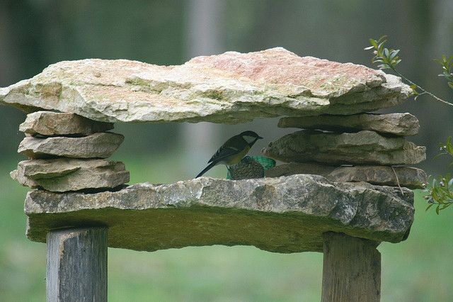 abri mangeoire pour oiseaux de jardin (mesange rougegorge) - dombes - refuge trough for garden birds (robin tit) by dombes et ailleurs, via ...