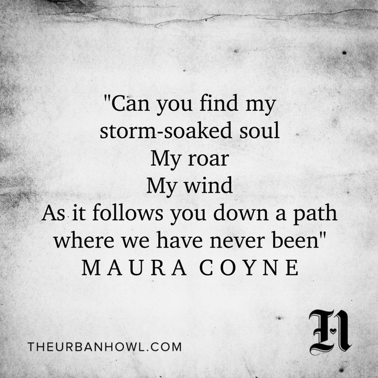 Can You Find My Storm-Soaked Soul, My Roar, My Wind?