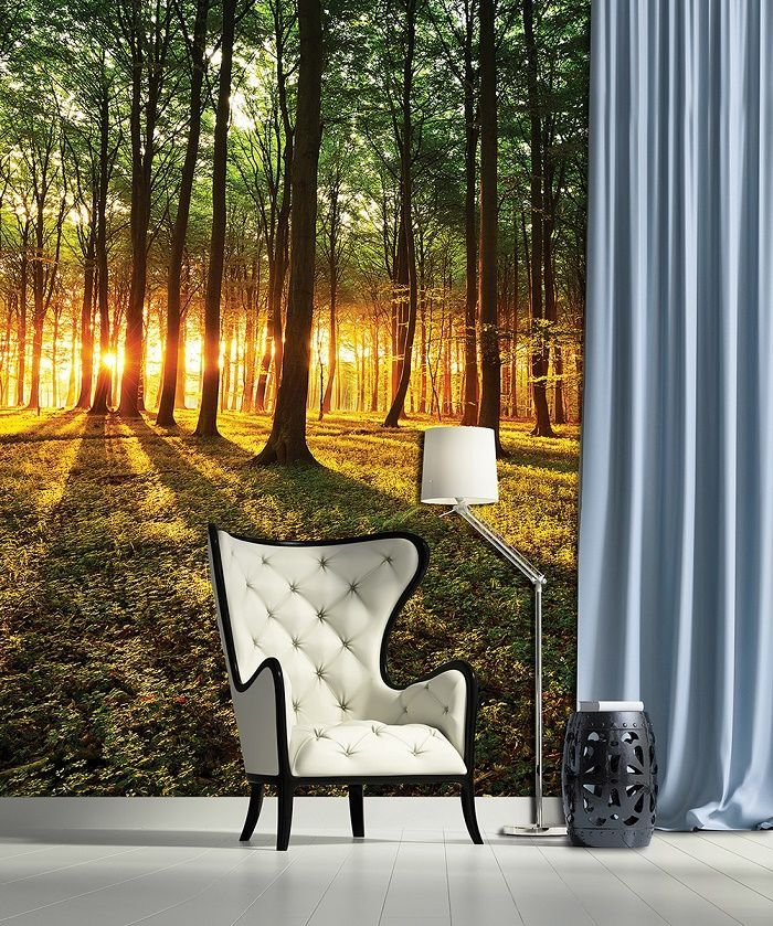 Giant Size Wallpaper Mural For Bedroom. Forest Scene Sunrice Wall  Decorationu2026 Part 62