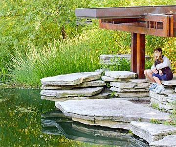 25 best ideas about chicago attractions on pinterest