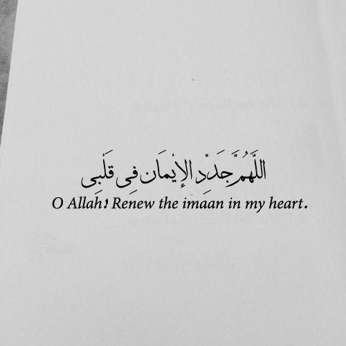 O Allah! Renew the imaan in my ❤️️.  #Islam #Quotes