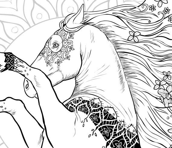 adult coloring book horses 43 beautifully hand drawn coloring pages - Coloriage De Cheval