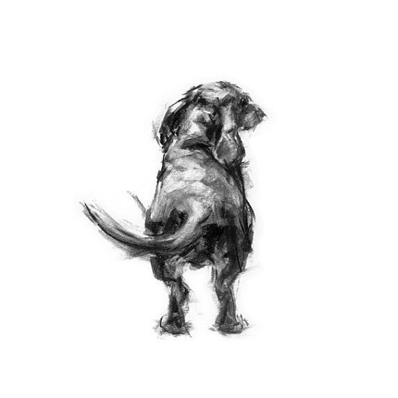 Dachshund The Wag fine art dog print by paintmydog on Etsy