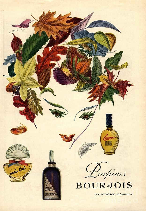 Bourjois 1940s Usa Womens Drawing by The Advertising Archives