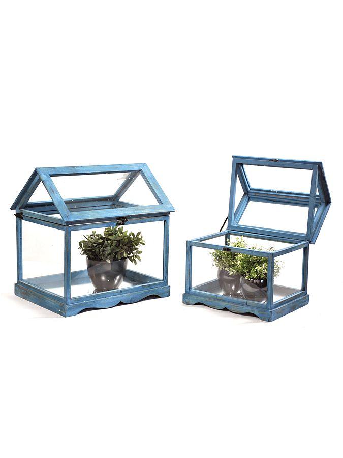 Mini szklarnie na kwiaty w kolorze niebieskim 178 PLN #limango #ogród #inspiracje #inspiration #home #garden #diy