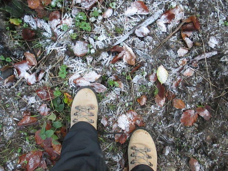 Zima, Winter, Inverno...