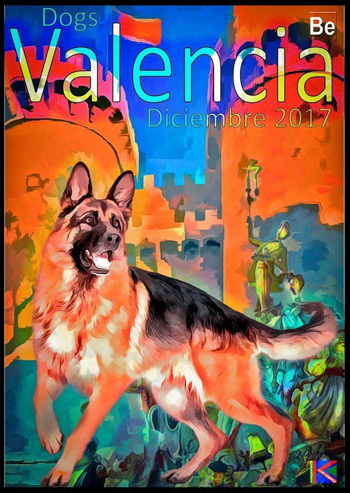 Valencia dogs