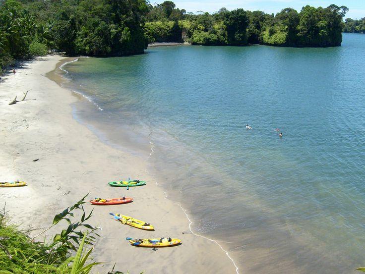 Recorriendo en kayak el Parque Bahía Málaga! http://www.awakeadventures.com/expedicion/pnn-bah%C3%ADa-m%C3%A1laga