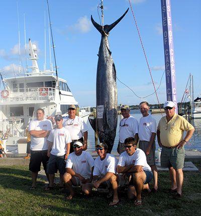 orange beach pictures | Orange Beach Alabama Charter Boat Fishing
