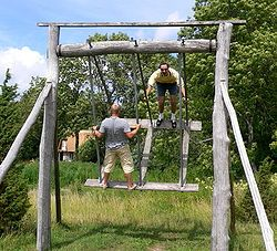 "The village Rocker - Wikipedia. This would not be the ""lazy"" way to swing. Would keep those kiddos active."