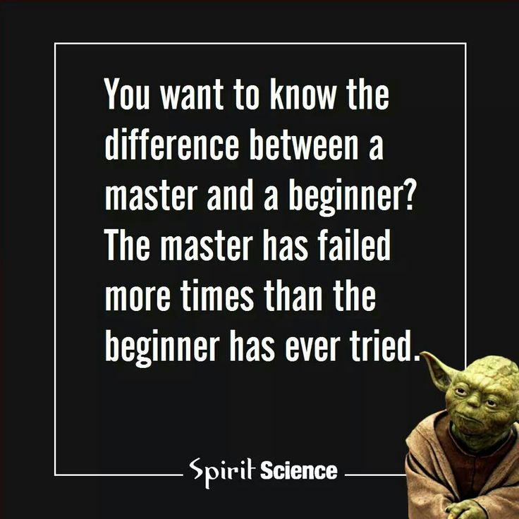 Master has failed more times than the beginner has ever tried