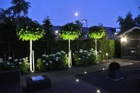 Afbeeldingsresultaat voor tuinverlichting moderne tuin