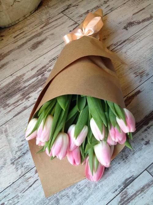 :: tulip love ::