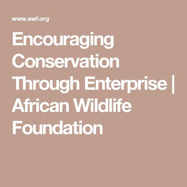 Encouraging Conservation Through Enterprise   African Wildlife Foundation