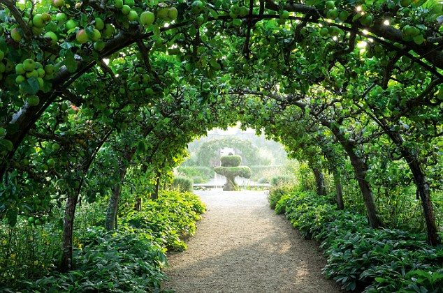 Highgrove Gardens: The apple tunnel is swathed in ripening fruit at this time of year