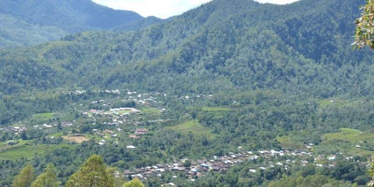 Menjelajahi Perkebunan Kopi Colol Di Flores - https://darwinchai.com/traveling/menjelajahi-perkebunan-kopi-colol-di-flores/