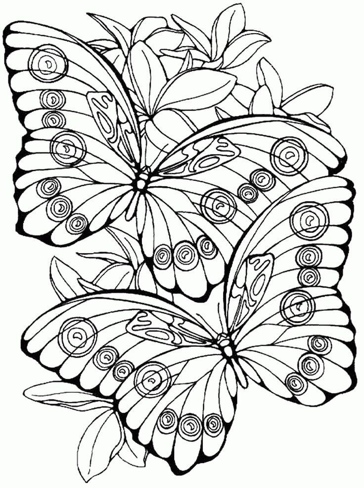 dibujos de mariposas para pintar - Buscar con Google
