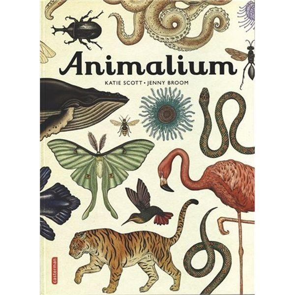 Casterman - Animalium