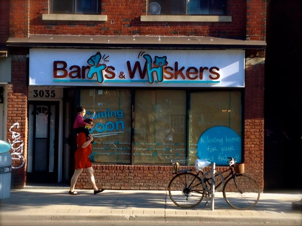 Barks & Whiskers #Toronto #Pets #Grooming s #cat #dog #Canada #PetBoutique #Barks #Whisker