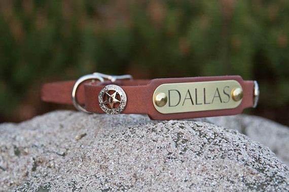 Texas Star Dog Collar Leather Concho Dog Collar by DogGoneNice, $35.00