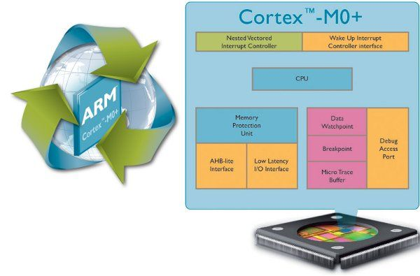 ARM Cortex-M0+, low cost 32-bit processor
